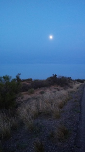 The moon rose as Carsten and Nalani biked.